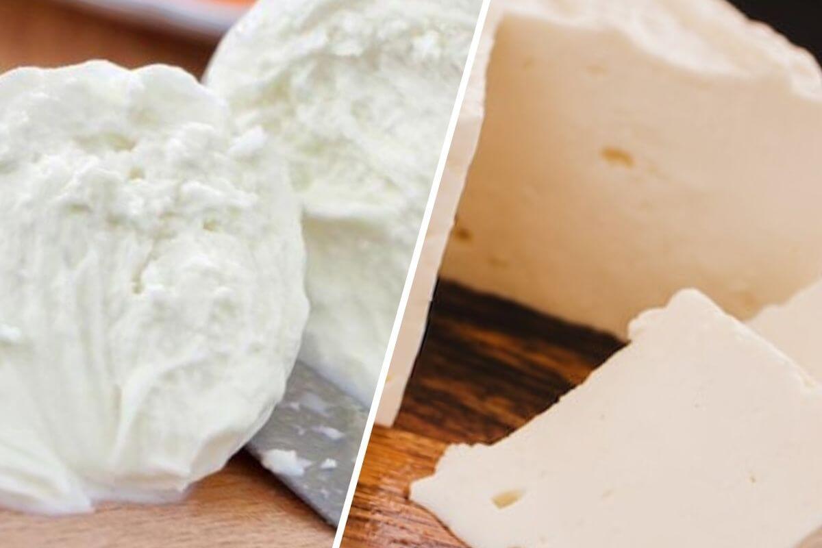 Mozzarella vs. queso cremoso, ¿cuál es mejor?